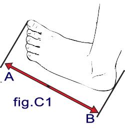 fig. c1